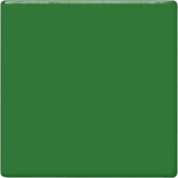 tp41-frog-green-square-2.25
