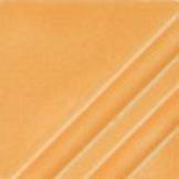 FN226SquashBlossom.jpg