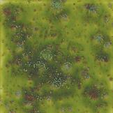 CG-716_PagodaGreen.jpg