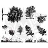 BotanicalTrees-2.25.jpg