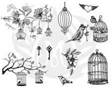 DSS141-BirdCage