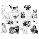 Dogs-2.25.jpg