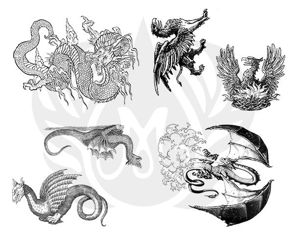 Dragons-8.25.jpg