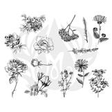 Flowers-2.25.jpg