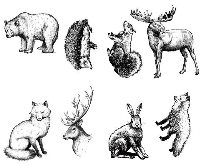 Silkscreen-Woodland-Animal-lg.jpg