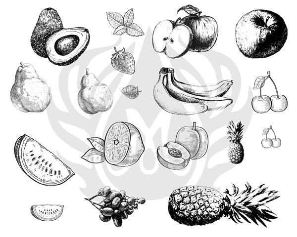 fruits-8.25.jpg