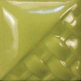 SW_507_Bright_Green_web-1979-200-200-80-c